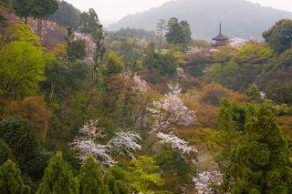 1063-kiyomizu-nagame.jpg